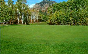 Aspen Hills Golf Course  For Information & Tee Times Call 307-883-2899  Open from 9:00AM to 6:00PM…7 days a week  Official Website:  http://www.svrawy.com/golf/aspen-hills-golf-course